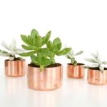DIY Mini Copper Planters and organizers