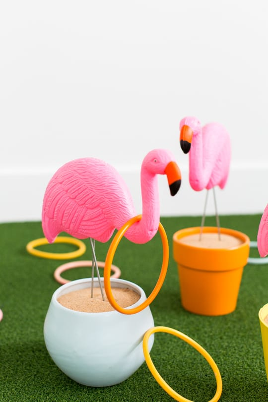 The Flamingo In Us All | 2018-2019 Car Release and Reviews
