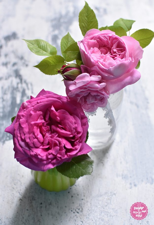 Rosenblüte2