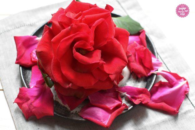 Rote-Rose-Essig.jpg