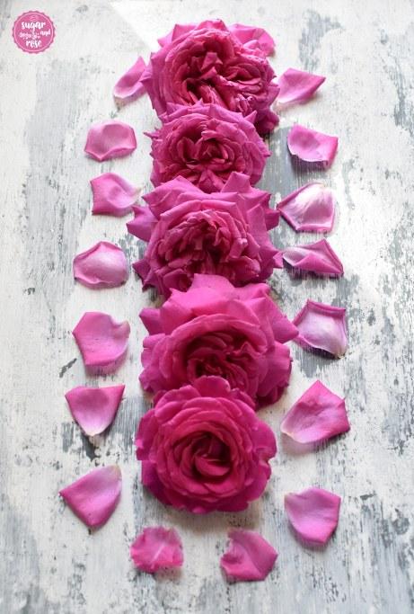 Rosenreihe