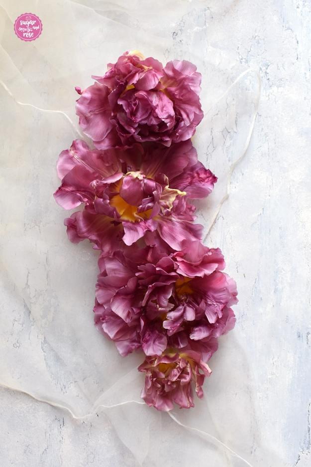 Dunkelrosa Tulpenblüten