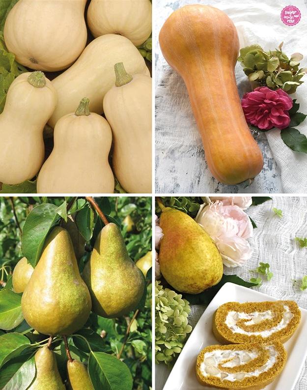 Butternuss-Kürbise hell und kleiner und orange und größer, darunter Birnen am Baum und zwei Stück Kürbisrolle mit Birne als Deko