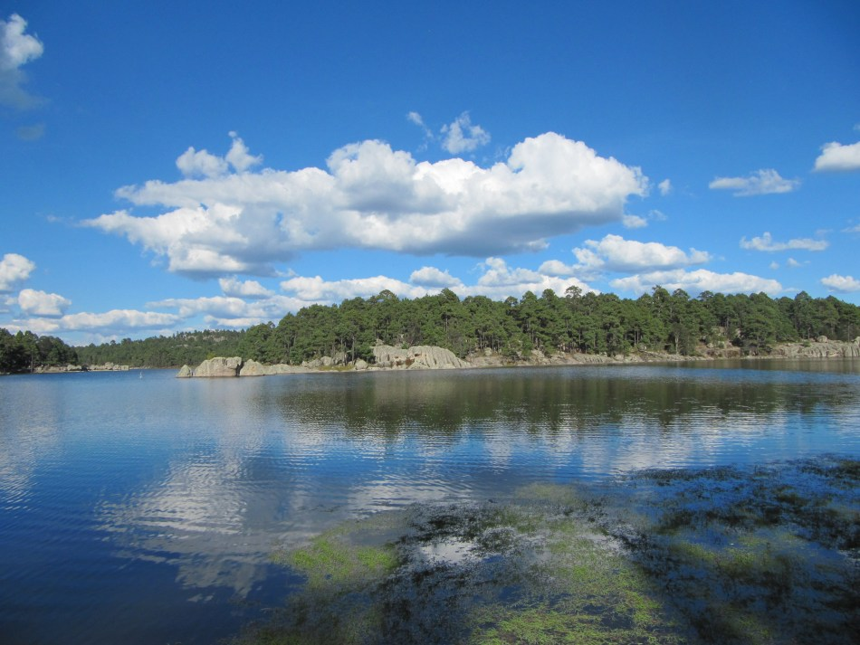 lago-arareko