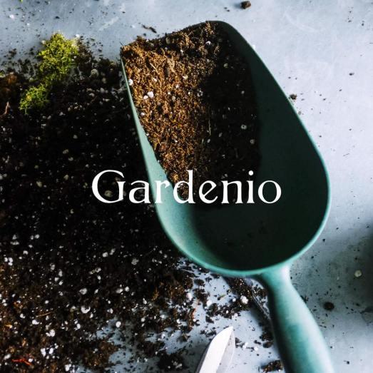 gardenio 1