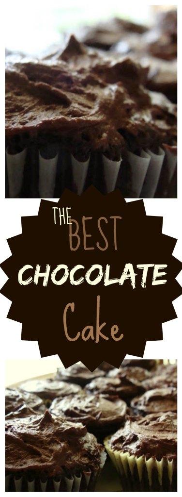 THE Best Chocolate Cake Recipe on www.sugarbananas.com