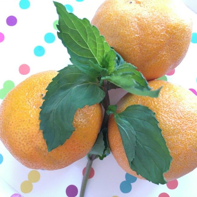 Orange Peppermint Lemonade on www.sugarbananas.com