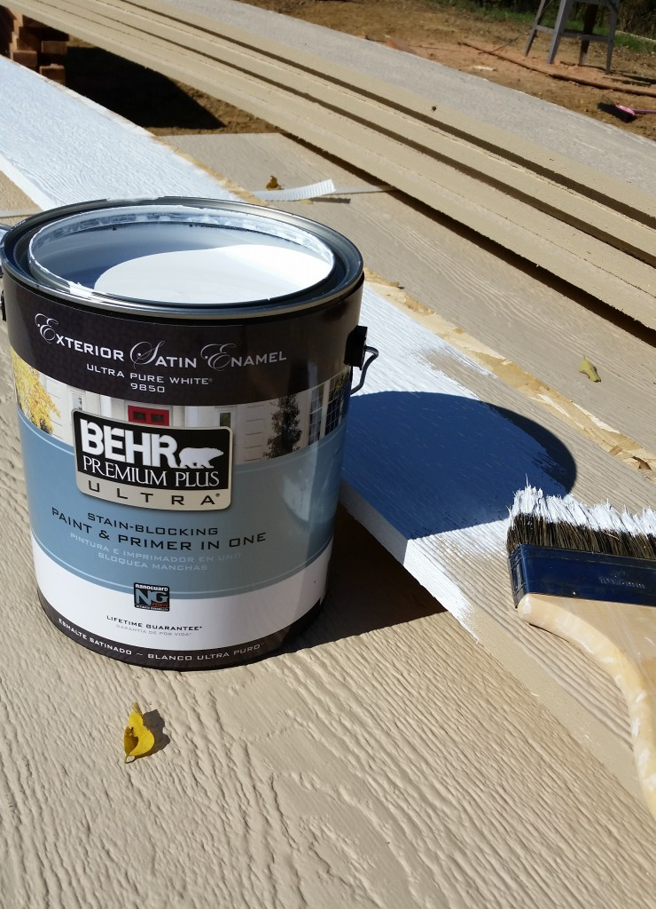 Behr Trim Paint : paint, Everyday, Paintin', Paint, Sugar, Crafts