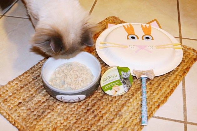 DIY Kitty Cat Face Mask with Nutrish Cat Food