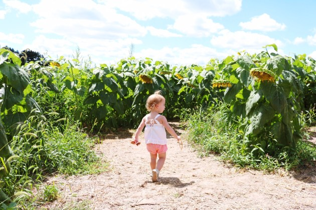 Fun FRIYAY Find - Freshly Picked Toddler Moccasins - Strolling through the Sunflowers
