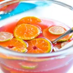 Cranberry and Orange Summer Punch