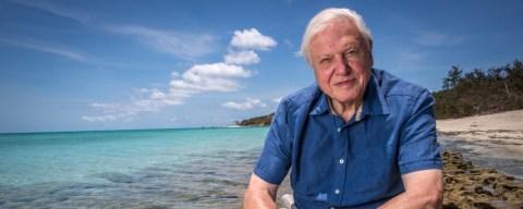 David Attenborough e la grande barriera corallina, dal 4 dicembre su Focus
