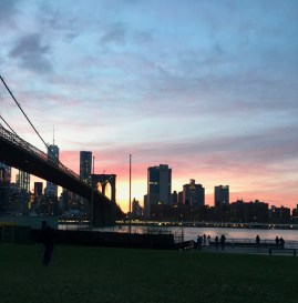 Beautiful view from the Brooklyn Bridge Park