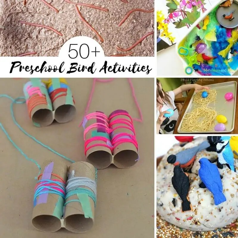50 ideas for a