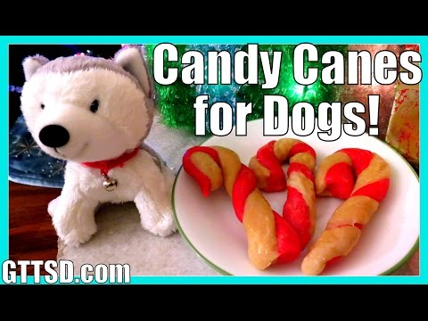 Candy Cane Cookies for Dogs | Christmas Treats Recipe DIY | Snacks with the Snow Dogs 30