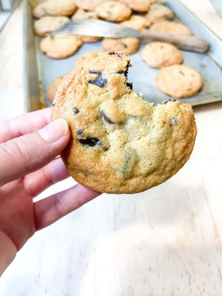 a chewy chocolate chip cookie