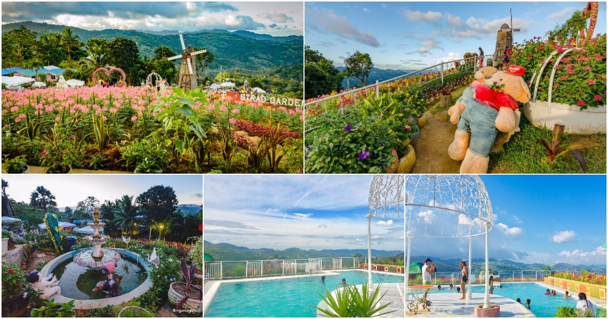 The NEW Sirao Flower Garden in Cebu City