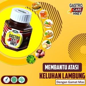 Gastro Care Madu Asam Lambung