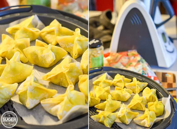 chicken wonton soup thermomix recipe 001