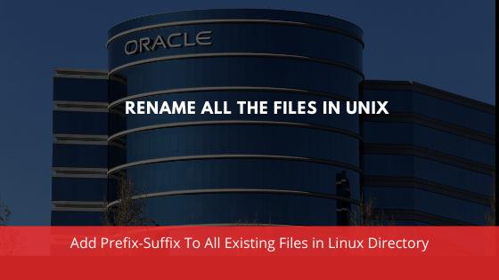 Rename all the files in unix