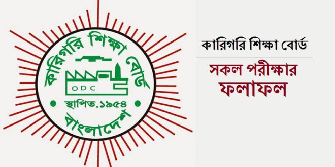 HSC Vocational Result 2019 - (ভোকেশনাল
