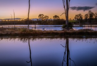 Wetlands near Childers in North Qld
