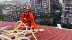 【犬猫動物動画まとめ】Chinese firefighters rescue Samoyed dog trapped on seven-story building's roof