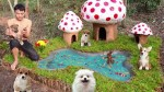 【犬猫動物動画まとめ】Rescue Abandoned Puppies Building Mud House Dog And Fish Pond For Black Fish