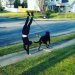 【犬猫動物動画まとめ】Woman Walks her Dog While Doing Handstand