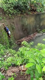 【犬猫動物動画まとめ】Two Young Heroes Save an Injured Mama Dog Stuck in a River