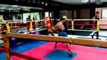 【犬猫動物動画まとめ】Guanteo Winston Guerrero VS Franco Gutierrez- Alpha Dog Boxing Club / Prodesa Boxing