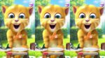 【犬猫動物動画まとめ】Ginger Cat Birthday Celebrations Talking Tom Friends Funny | Birthday Cake | Smack | Eating