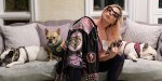 【犬猫動物動画まとめ】Lady Gaga's Dog Walker Shot, French Bulldogs Stolen