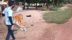 【犬猫動物動画まとめ】Real Dog  VS Fake Tiger  Prank PART 7 More reaction How can I Stop laugh Funny 2021