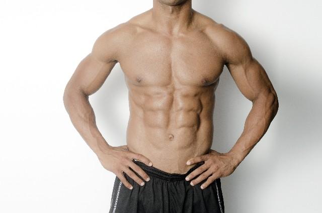 筋肉芸能人