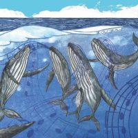 Cetus Finalis Author Interview Revisited (On Whalesong)