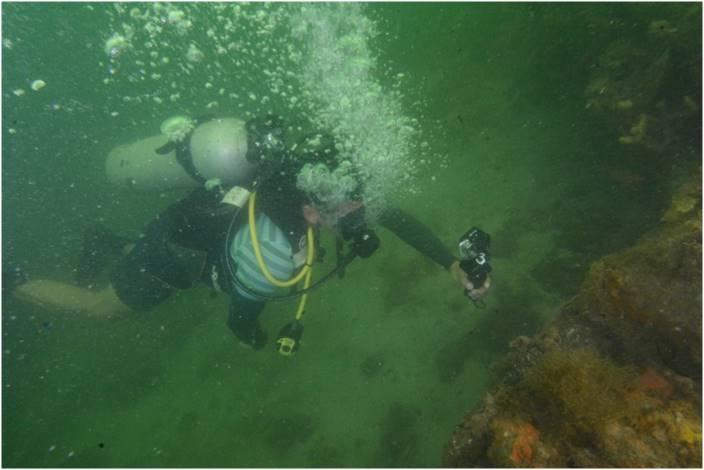 水中考古学 コロンビア 4