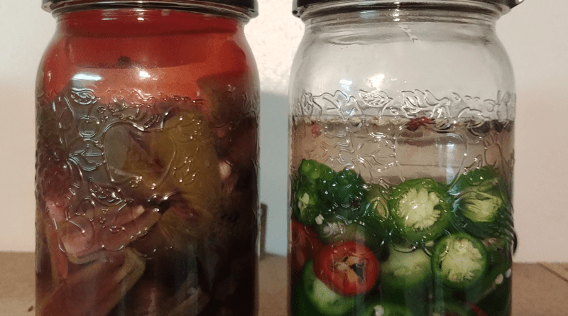 fermenting food - peppers
