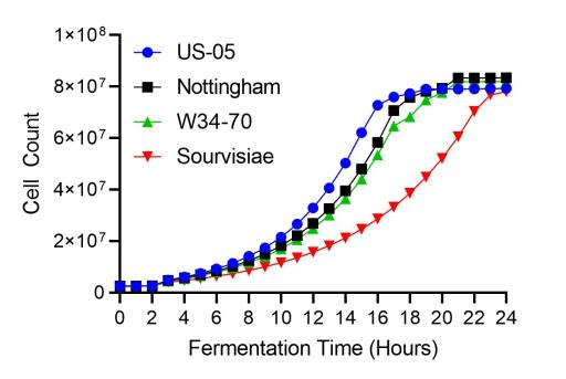 Growth curves for four yeasts