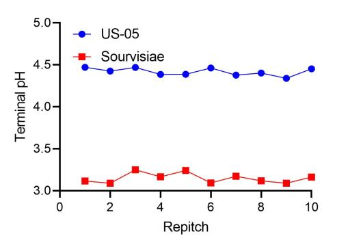 sourvisiae gives a consistent terminal ph when repitched