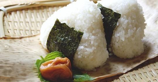日本人はご飯食べようね❤