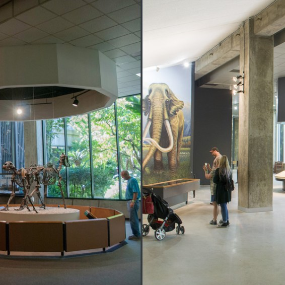 Museum interior Before/After