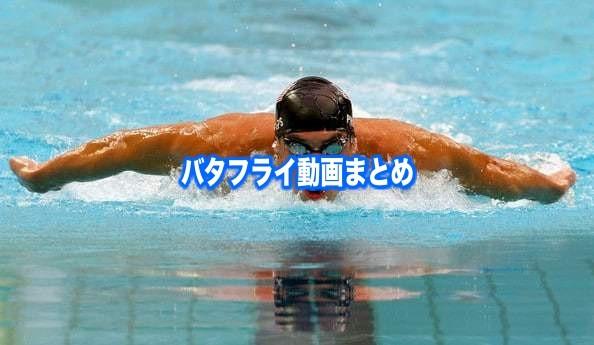 【バタフライ泳ぎ方の動画6選】うねり&キックと手のかき方の練習方法
