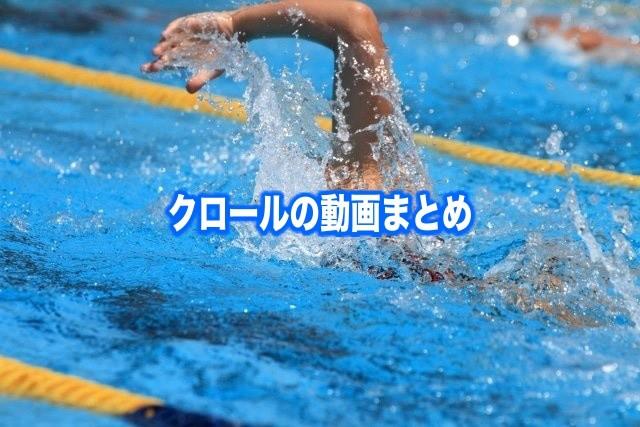 クロール 泳ぎ方 動画