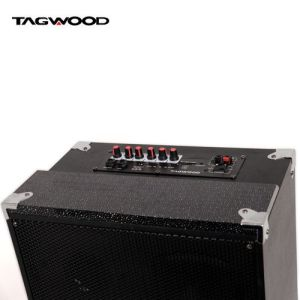 TAGWOOD 10A Outdoor Speaker