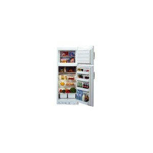 gas and electric fridge