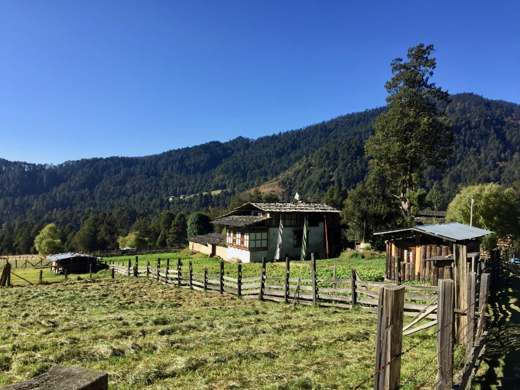 We were the first visitors to stay at this farmhouse in the tiny Bhutanese village of Gogona.