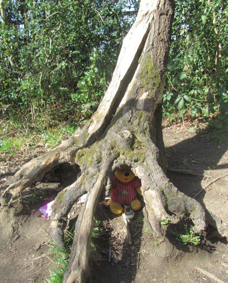winnie the pooh ashdown forest