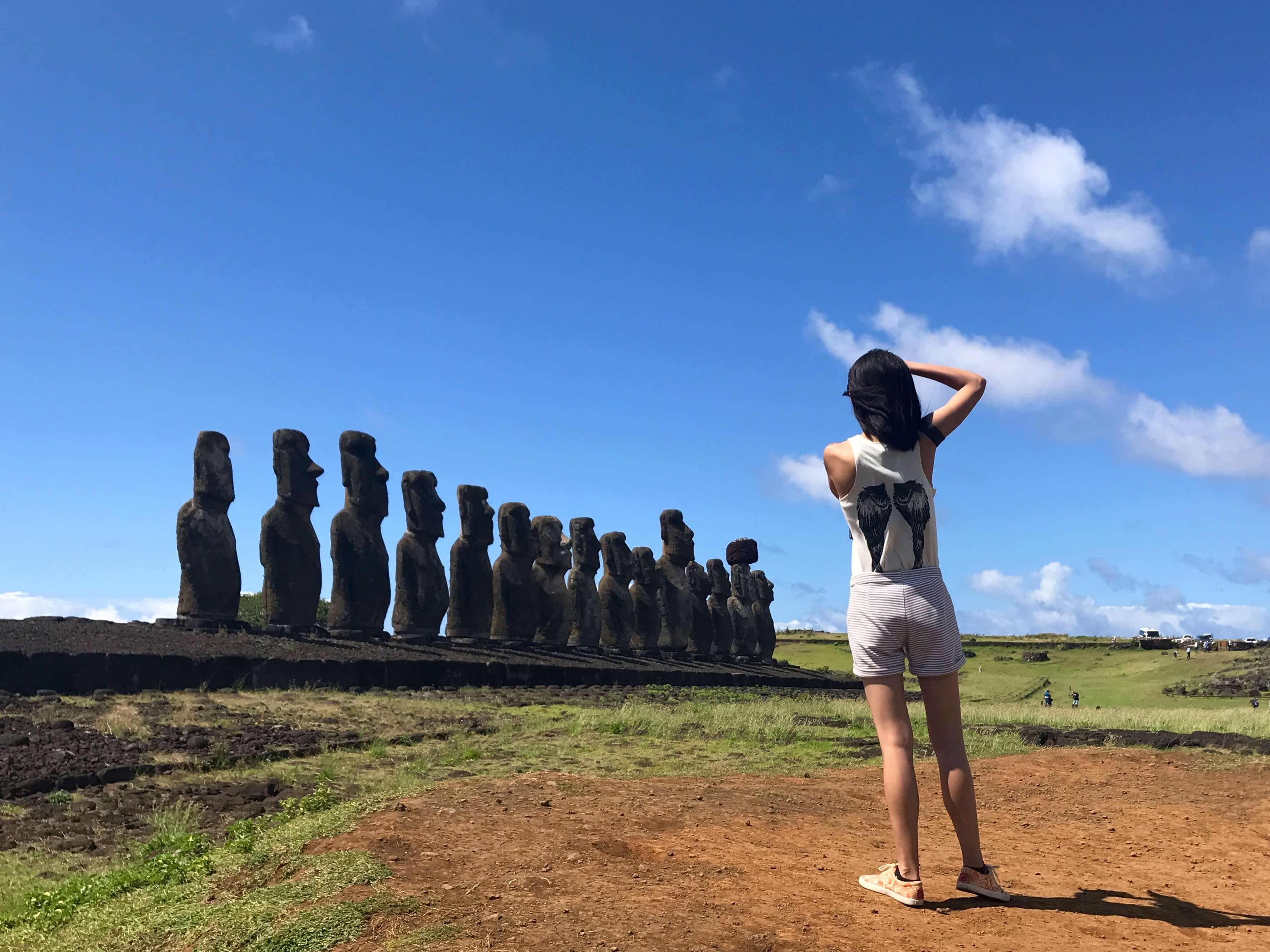 Easter Island Chile Suitcase Six