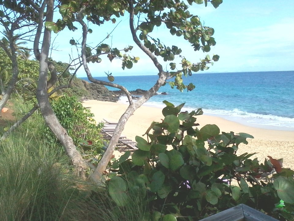 Suitcase Six Private-Beach-W.-Resort Woman of the Week: Interview with a Travel Advisor